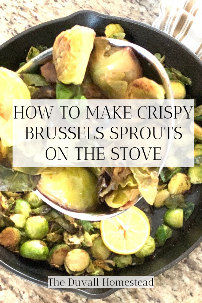 crispy brussels sprouts, how to make brussels sprouts, stovetop veggies, healthy recipes  #brusselssprouts #brussels #veggies #healthydinnerideas #healthysidedishideas #castironveggies #vegetariandishideas #entertainingmealideas #foodie #recipes #healthyrecipes #food #plantbasedmeals #plantbasedideas