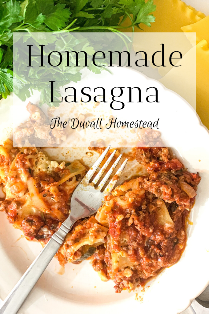 This is our go-to pasta recipe for cold winter nights. With meat, zucchini, and tons of herbs & spices, I know your family will love this homemade lasagna.  #homemadelasagna #winterrecipes #lasagnarecipe #lasagna #dinnerideas #dinnerpartyideas #dinnerrecipes #lasagnarecipe #howtomakelasagna #beef #pork #zucchini #heartydinners #farmhousedinner