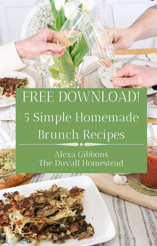 Brunch Menu for the whole family - healthy, organic, delicious. You will love the homemade juicy ketchup over crispy stovetop hash browns and the egg & veggie bake. On the side, serve up some homemade yogurt with oven-roasted granola. Your guests will keep coming back for more, that's for sure.   #brunch #menu #healthy #family #food #organic #homemade #ketchup #yogurt #granola #eggs #hashbrowns #castiron #recipes #stovetop #oven #kitchen #food #foodie #delicious #simple #easy #breakfast #easter #holiday #menu