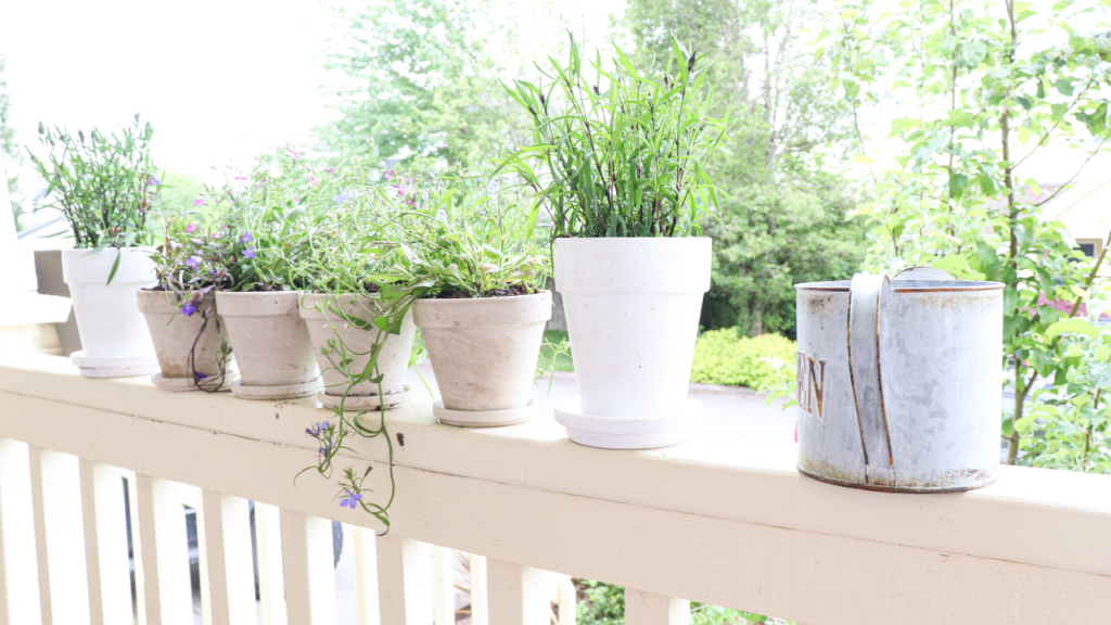 all the flower pots lined up on our farmhouse front porch