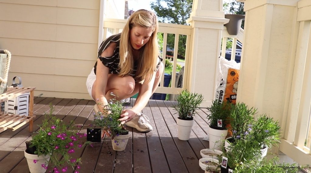 potting the flowers for our front porch