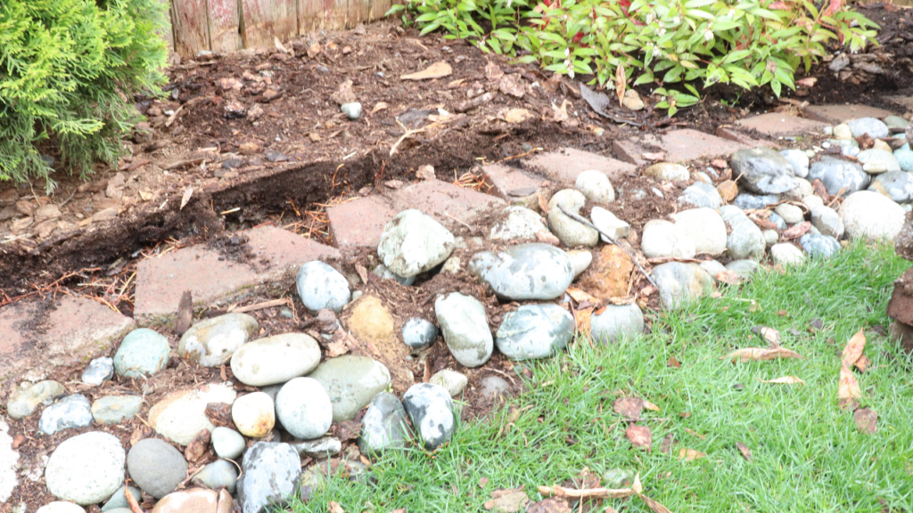 BEFORE: Retaining wall for chickens