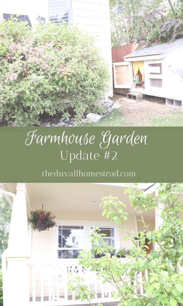 We love our farmhouse garden. Come along our journey as we transform our front, side, and backyard into our farmhouse garden.   #farmhouse #garden #flowers #naturalweedkiller #weedprevention #peonies #farmhousedecor #frontporch #inspo #chickenkeeping #backyardchickens #retainingwall #gardening #easy #ideas #planterbox #weedkiller