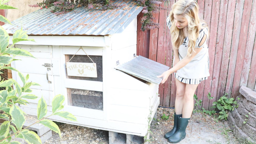 how to build a simple beautiful chicken coop DIY easy small backyard chicken coop