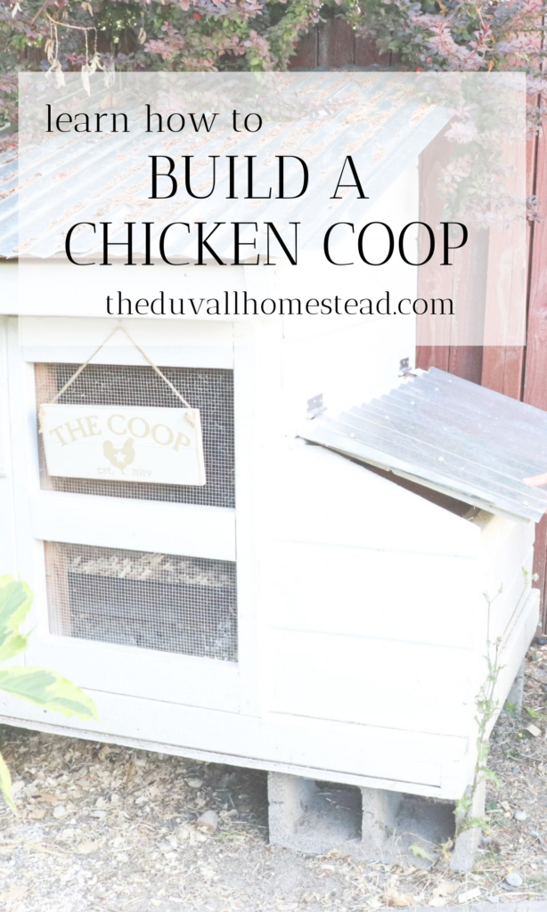 This chicken coop is cute and perfect for your small backyard flock of chickens.   #chickencoop #howtobuildachickencoop #diychickencoop #diy #chicken #backyardchickens #chickenkeeping