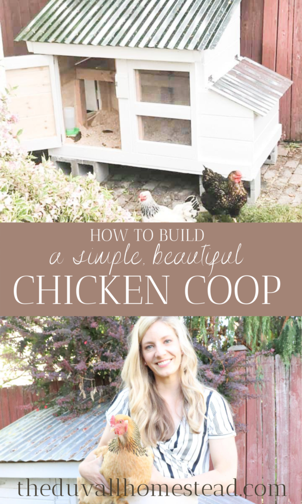 How to build a simple beautiful chicken coop.   #chickencoop #simple #beautiful #howto #DIY #howtobuildachickencoop #backyard #chickens #backyardchickens #chickenkeeping