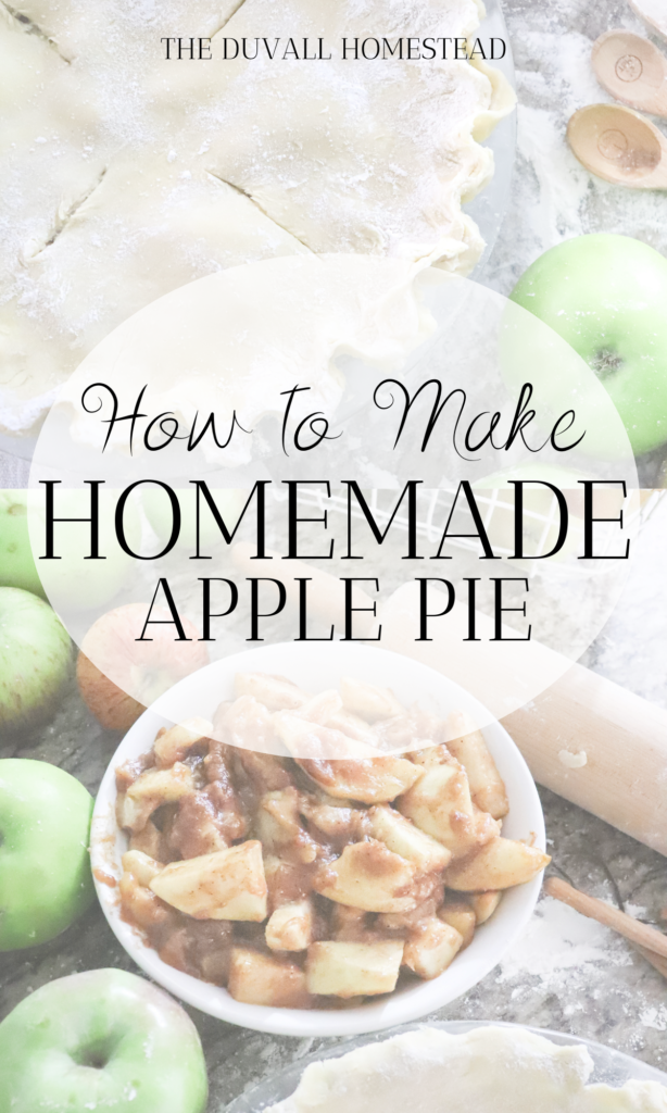 Learn how to make juicy flakey homemade apple pie with sourdough pie crust. Create this warm cozy fall recipe that is naturally sweetened with wild honey.   #fallrecipes #applepie #naturallysweetened #homemade #falldesserts #dessertideas #simpledesserts #pierecipes #piecrust #sourdoughpiecrust #healthydesserts #sourdough #healthyrecipes #fall #farmhouseapplepie #homemadeapplepie