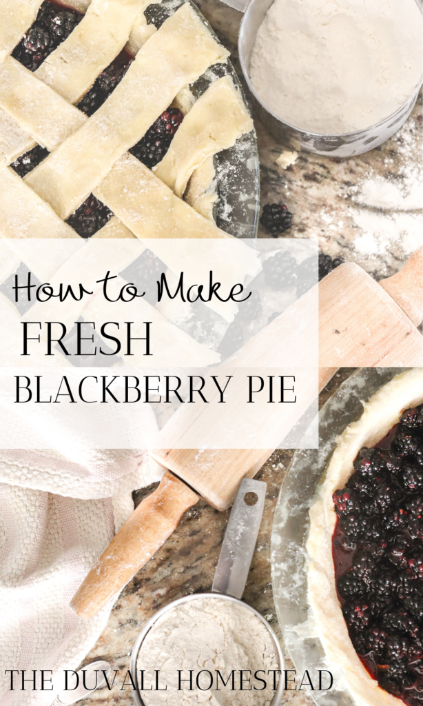 Learn how to make fresh blackberry pie! Top with homemade whipped cream for the perfect fall dessert.   #fallrecipes #pie #blackberrypie #fresh #sourdough #piecrust #sourdoughpiecrust #howtomakeblackberrypie #bestblackberrypie #bestpiecrust #falldesserts #fall #recipes #foodie #healthy #delicious #fresh