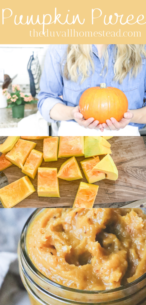 Learn to make delicious pumpkin puree with a real pumpkin. No more canned pumpkin. You can make this pumpkin puree up in under an hour and make a bunch of it each season, then enjoy it in pancakes, pies, chilis, and more all winter long.  #pumpkin #howtomakepumpkinpuree #pumpkinpuree #cannedpumpkin #fromscratch #fallrecipes #yummy #roasted #pumpkinrecipes #roastedpumpkin #pumpkinsoup #pumpkinchili #pumpkinpancakes #pumpkinpie #natural #organic #mealideas #recipes #yummy #foodie