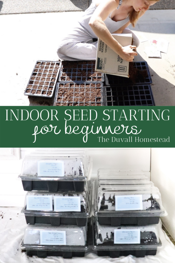 Join me in this simple tutorial for how to start a garden indoors with seeds. It's really easy, so grab some dirt and your favorite shovel and let's get started. Gardening for beginners tutorial. Free seed labels for your garden tray.   #garden #seedstarting #gardenfromseed #startagarden #howtostartagarden #planting #gardening #homesteading #farming #backyard #flowers #vegetables #growing #plants #gardener #organic #seeds #seedlabels