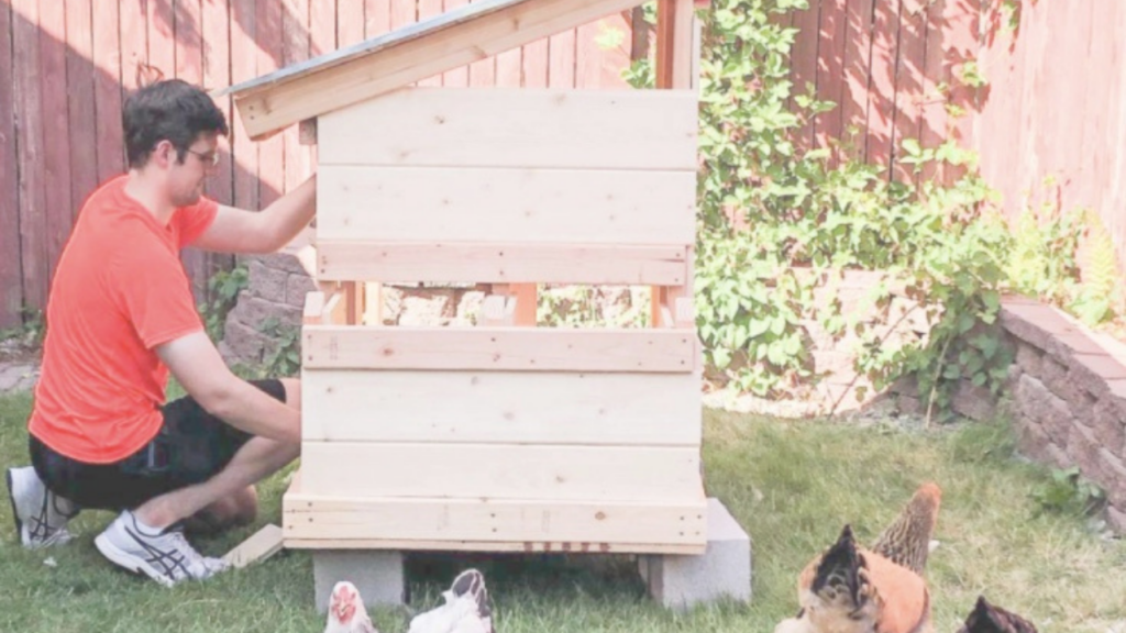 Building a chicken coop for a small backyard in the suburbs