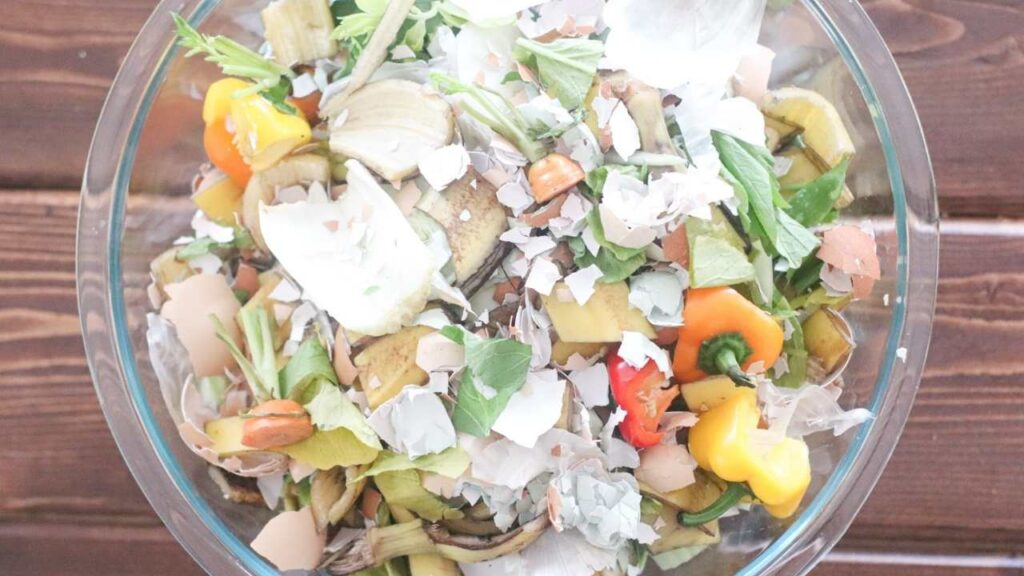 A bowl of food that can be composted