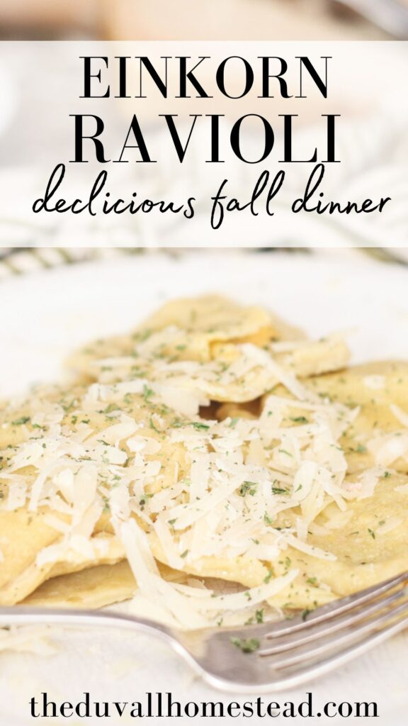 This homemade einkorn ravioli is warming and delicious, with a hand crafted dough that's easy to make and doesn't require a pasta maker or mold. With butternut squash filling, every bite is a little slice of fall. Enjoy!  #einkornravioli #ravioli #einkorn #einkornravioli #homeaderavioli #nopastamaker #nomold #howtomakeravioli #healthydinner #fallrecipes #fallmealideas #food #recipeshare #fallfood